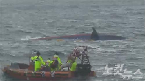 지난 6일 오전 6시 25분쯤 제주 추자도 인근 해상에서 전남 해남선적 9.77톤급 낚시어선 돌고래호가 전복된 채 발견됐다. (사진=제주해경 동영상 캡처)