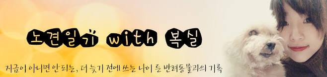 김유민의 노견일기 - 늙고 아픈 동물이 버림받지 않기를 - 블로그 http://blog.naver.com/y_mint 인스타 olddogdiary