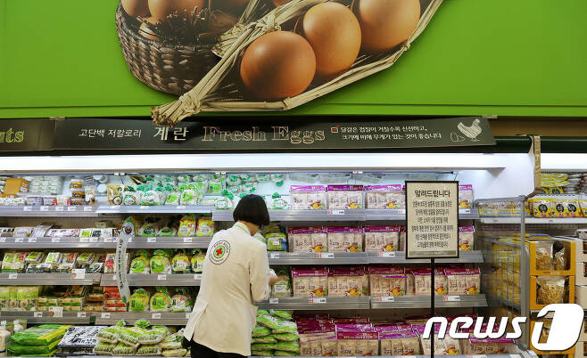 16일 오전 서울의 한 대형마트에서 판매가 중단돼 계란 대신 다른 식품이 진열된 계란 코너에서 품질감독관이 품질 점검을 하고 있다. 2017.8.16/뉴스1 © News1 박세연 기자