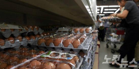 농식품부가 적합판정을 받은 241개 농가 계란을 정상유통 한다고 밝힌 16일 오후 서울 양재동 농협 하나로클럽에서 시민들이 계란을 고르고 있다. (사진=황진환 기자)