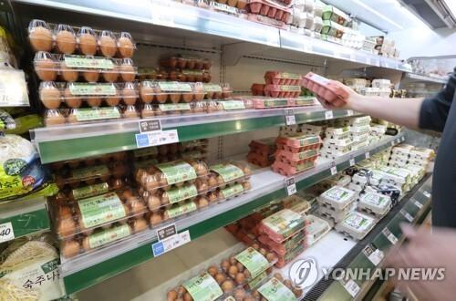 지난 19일 서울 시내 한 대형마트에서 한 고객이 계란을 고르고 있는 모습[연합뉴스 자료사진]
