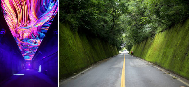 [왼쪽/오른쪽]수양개빛터널에서 펼쳐지는 미디어 아트 / 연인들의 성지, 이끼터널