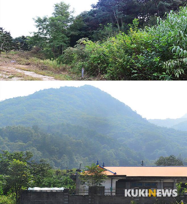 고 김재정씨가 소유했던 대전 유성구 용계동 임야 인근(위)과 충북 옥천군 이원면 땅(아래).