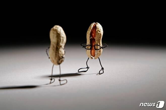 테리 보더, 까발리기 Exhibition (사비나미술관 제공) © News1