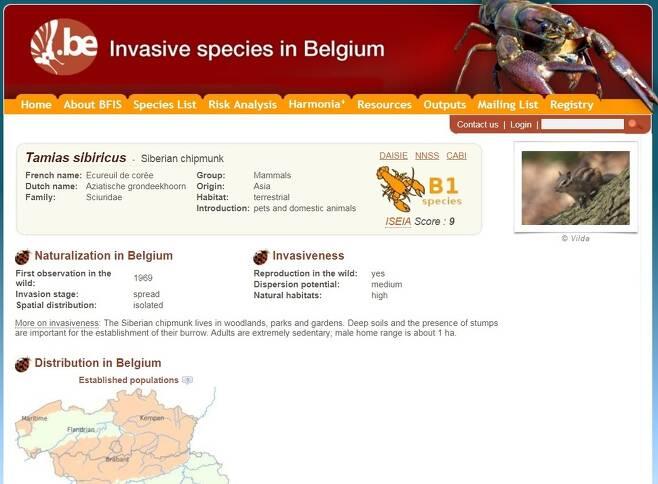 다람쥐를 외래종으로 안내한 벨기에 정부의 누리집. 국토의 상당 부분에 퍼져 있음을 알 수 있다.