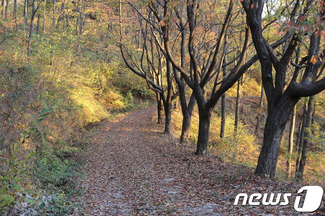 인천 삼형제섬길  © News1