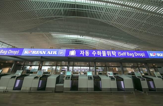 인천국제공항 제2여객터미널 출국장 3층에 마련된 자동수하물 위탁(Self Bag Drop·셀프 백 드롭) 카운터 모습. 사진 인천공항공사 제공