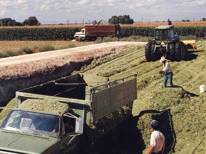 미국의 한 농가에서 농부들이 트랙터를 사용해 옥수수를 대량 파종하고 있다. [중앙포토]