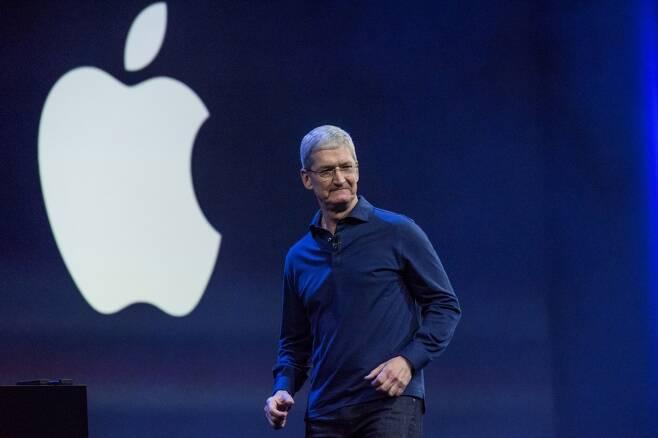 팀 쿡 애플 CEO/사진=블룸버그