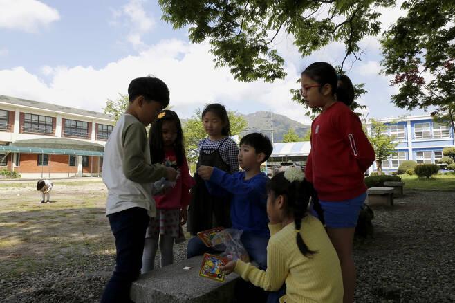 느티나무가 드리운 숲그늘에 모여 딱지치기를 하고 있는 초등학생들. 종이 딱지가 아닌, 플라스틱으로 만들어진 딱지다. ⓒ이돈삼