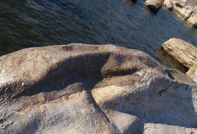 유리섬유가 선명하게 드러난 일산호수공원 폭포앞 인조암.