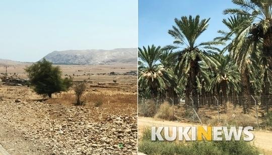 왼쪽은 팔레스타인 거주지역, 오른쪽은 이스라엘 불법 정착촌.