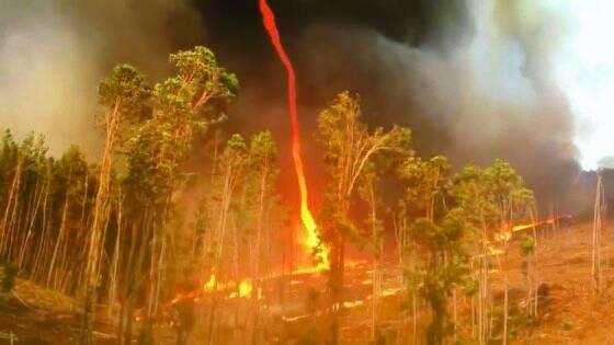 호주 웨스턴오스트레일리아주 사우스햄튼에서 지난해 목격된 거대한 화염 토네이도. 산불을 잡지 못하는 주요한 원인이다. [로이터=연합뉴스]