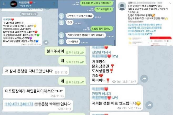 'n번방 영상' 등 불법 성착취물을 거래하는 SNS 이용자들 (사진=연합뉴스)