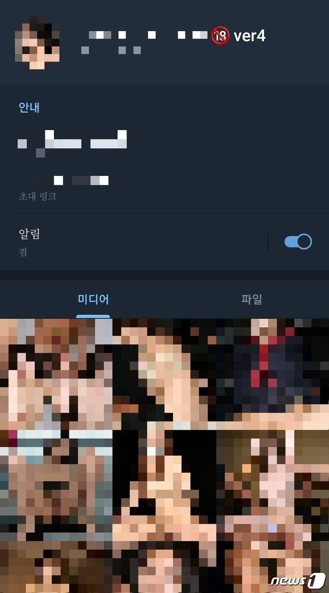 텔레그램 상 여성 아이돌 딥페이크 사진 리스트 © 뉴스1 황덕현 기자