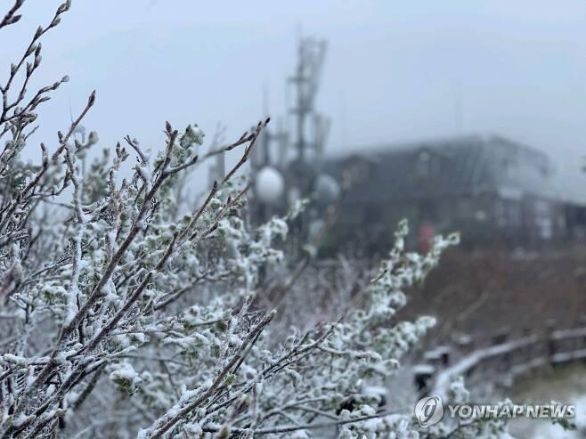 5월 설악산에 내린 눈 (속초=연합뉴스) 19일 강원 설악산 중청대피소 인근에 눈이 내린 눈이 나뭇가지와 대피소 주변에 쌓여 있다.[설악산국립공원사무소 제공. 재판매 및 DB 금지] momo@yna.co.kr