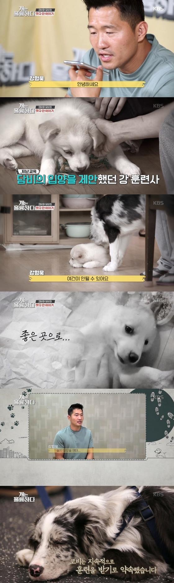 /사진=KBS 2TV '개는 훌륭하다' 방송화면 캡처