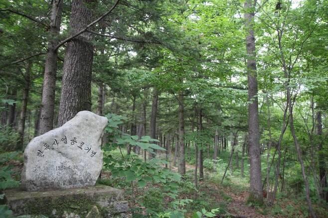울산시 울주군 상북면에 설치된 한독사업 종료 기념비 뒤로 나무가 울창하게 우거져 있다. [촬영 허광무]