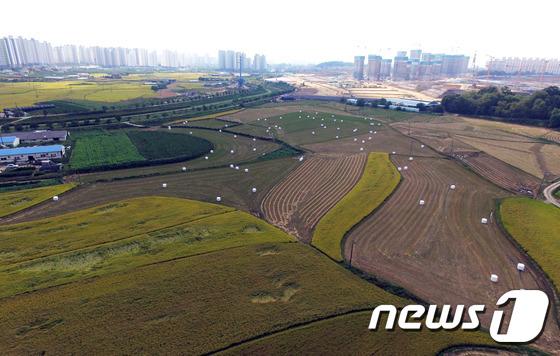허위 영농계획서를 제출해 세금만 감면받고 임야 등을 되판 농업법인 7곳이 덜미를 잡혔다(사진은 기사내용과 관계 없음).(경기도 제공)/뉴스1 © News1