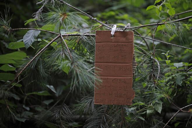 텐트촌에도 규칙은 있다. 무단 쓰레기 투기 경고문이 나뭇가지에 걸려 있다. 이정아 기자