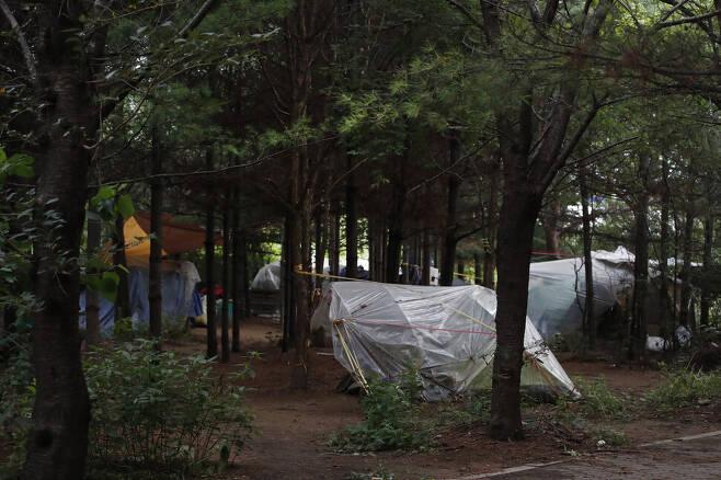 빽빽히 들어선 나무들로 텐트촌은 한낮에도 어두운 편이다. 이정아 기자