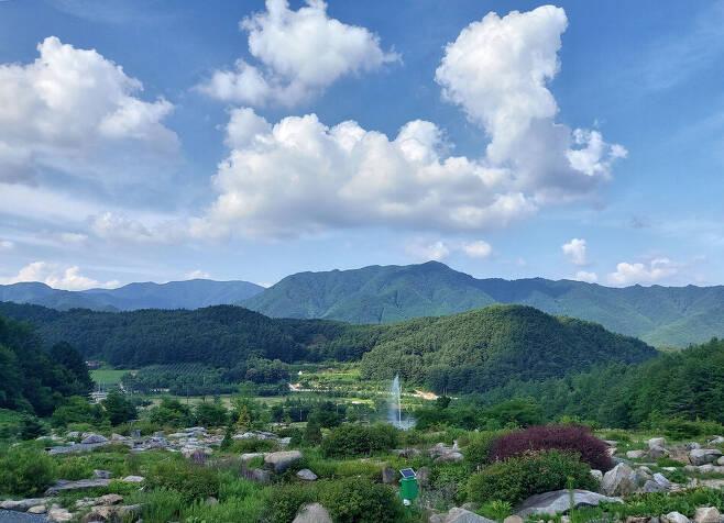 지난 9일 경북 봉화군 춘양면 국립 백두대간 수목원 '암석원' 풍경. 김선식 기자
