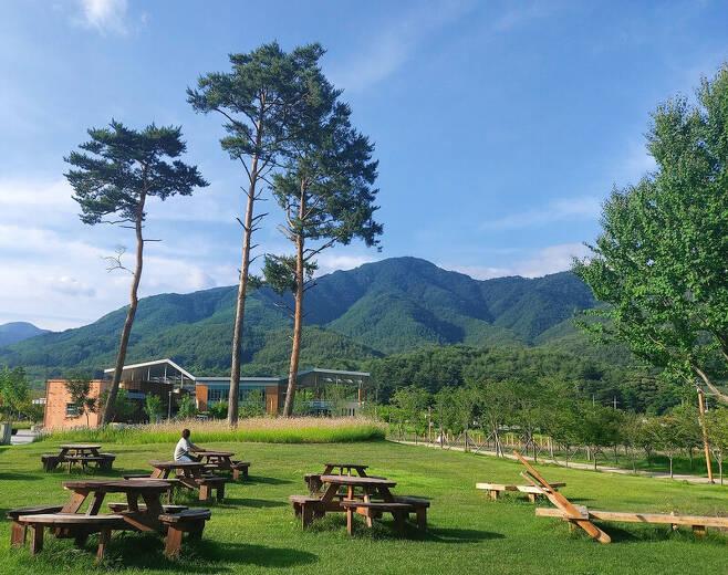 국립 백두대간 수목원 진입광장 주변 풍경. 김선식 기자