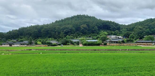 경북 봉화군 봉화읍 '닭실마을' 전경. 김선식 기자