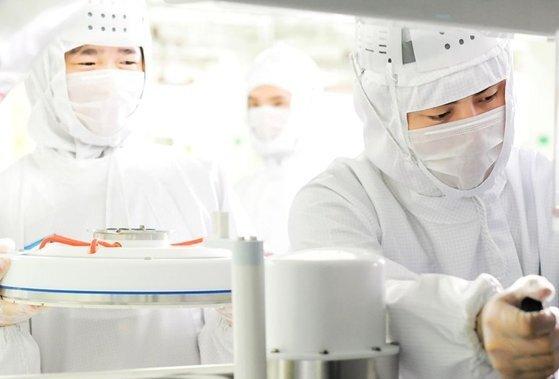 CXMT직원들이 반도체 공장에서 작업하는 모습. [사진 CXMT]