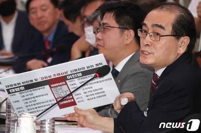 태영호 미래통합당 의원이 이인영 통일부 장관 후보자에게 질의하고 있다./뉴스1 © News1 성동훈 기자