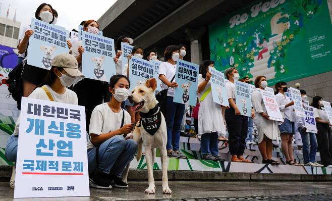 22일 낮 서울 광화문 세종문화회관 앞에서 동물단체들이 '개도살 식용금지' 집회를 열고 청와대에 공개서한을 전달했다. 동물해방물결 제공