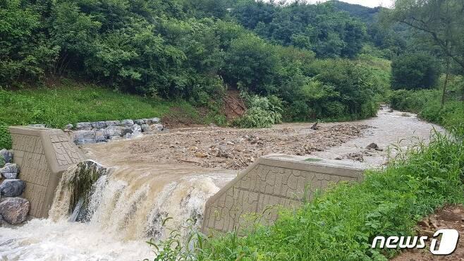 사방댐이 국지성 집중호우로 인한 비 피해 예방에 큰 효과가 있는 것으로 나왔다. 사진은 상류에서 떠내려 온 토사와 나뭇가지 등이 사방댐에 걸려 있는 모습(충주산림조합 제공)2020.8.7/© 뉴스1