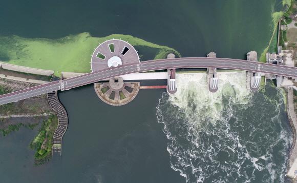집중호우로 전국 곳곳에서 피해가 속출하면서 4대강 사업 논란이 불거지고 있다. 4대강 보가 홍수 예방에 효과가 있다는 의견과 없다는 의견이 팽팽히 맞서고 있다. 사진은 대구 달성군 낙동강 강정고령보의 수문이 열려 물이 방류되는 모습.대구 뉴스1