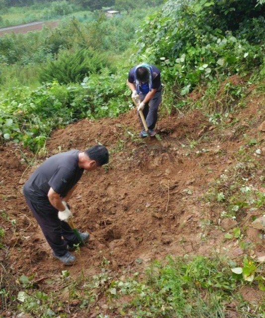 황의섭씨 등이 지난 8월 21일 경기도 양주시 공설묘지에서 발굴작업을 하고 있다. [사진 황의섭씨]