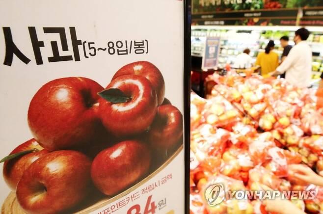 사과 [연합뉴스 자료사진]