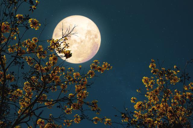 달은 오랜시간 음악인들에게 끊임없는 영감을 제공했다. 게티이미지뱅크