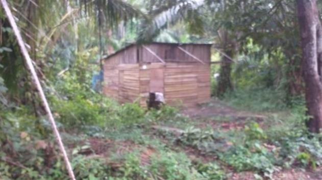 성폭행당하는 엄마 구하려다 9세 소년이 살해된 집 [수라·재판매 및 DB 금지]