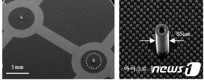 폴리머 초미세 노즐 어레이(왼쪽)와 이를 확대한 외경 85μm, 내경 40μm, 높이 150μm의 폴리머 초미세 노즐 및 주변의 마이크로 돌기 모습. ©뉴스1