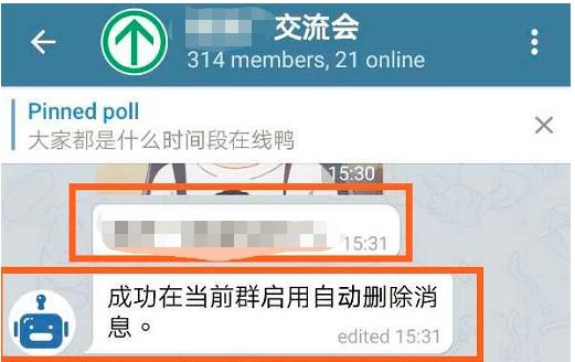 """이 채팅방에서는 """"대부분 언제 온라인상태이냐""""라는 투표가 진행중이다. 또한 메시지에는 """"자동 삭제 메시지 기능이 현재 그룹에 성공적으로 작동했습니다""""라고 적혀있다. 치루신문 캡처"""