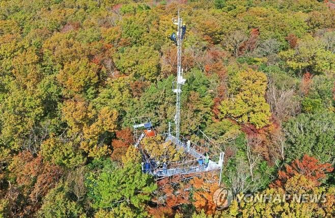 서귀포시험림 산림 미세먼지 측정넷