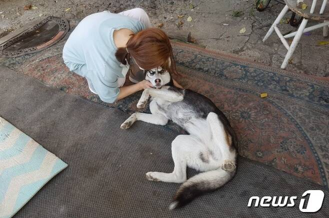 사람을 좋아하는 강아지 단풍이. 사진 우리동생 제공 © 뉴스1