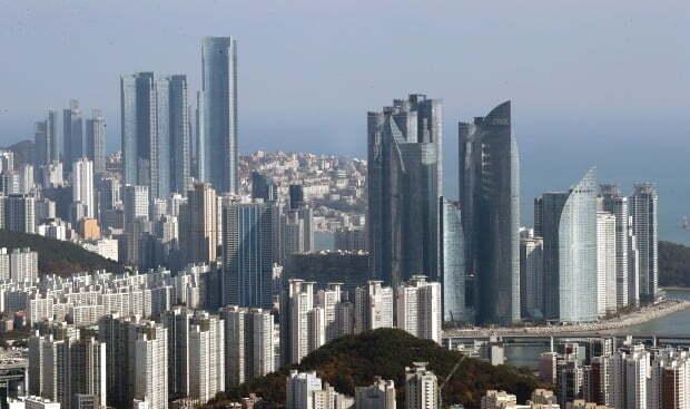 부산 해운대구 일대 아파트와 고층빌딩 모습.  /연합뉴스
