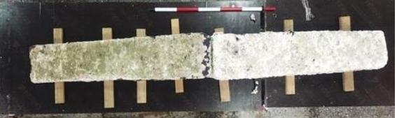 제주 신창리 해역에서 발견된 닻돌.(국립해양문화재연구소 제공)© 뉴스1