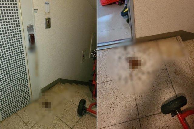 테러 당한 당사자가 올린 사진.