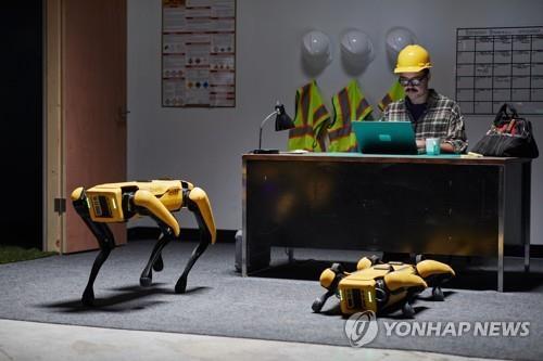 현대차, 미국 보스턴 다이내믹스 인수 현대차그룹은 최근 미국 로봇 전문 업체 '보스턴 다이내믹스'에 대한 지배 지분을 '소프트뱅크그룹'으로부터 인수했다. 사진은 보스턴 다이내믹스의 4족 보행 로봇 스팟.   [현대자동차그룹 제공. 재판매 및 DB 금지]