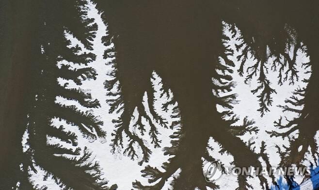 한파가 그린 추상화 한파가 기승을 부린 지난 15일 오후 경기도 안산시 대부도의 한 갯벌이 얼어 있다. [연합뉴스 자료사진]