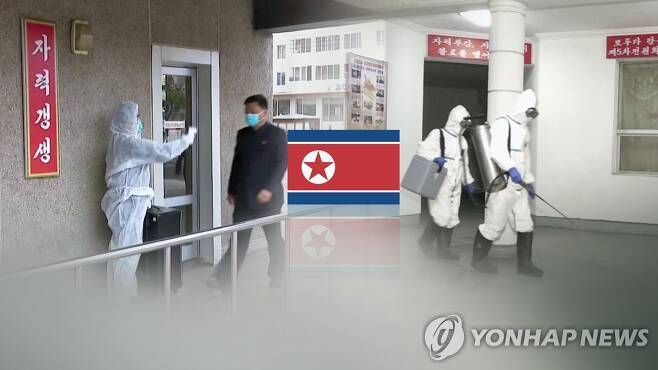 """북, 평양 외국공관에 방역협조 요청…""""눈싸움도 자제"""" (CG) [연합뉴스TV 제공]"""