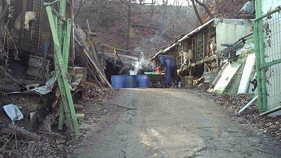 3기 신도시로 지정된 남양주시 왕숙지구에 불법 건축된 개농장의 모습. 세이브코리안독스 제공