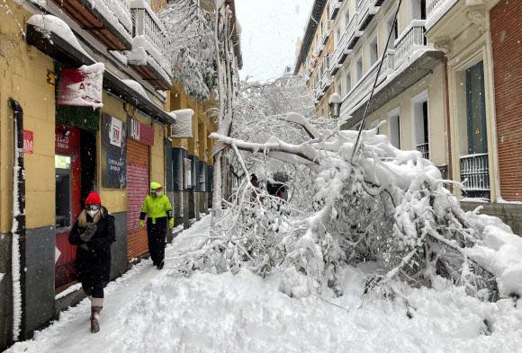 50㎝ 폭설 내리고… 지구촌 곳곳 북극 한파 - 전 세계 국가들이 새해 초부터 기후변화의 영향으로 추정되는 폭설과 한파를 겪고 있다. 기록적인 폭설이 내린 스페인 마드리드에서 9일(현지시간) 시민들이 폭설로 쓰러진 나무 옆을 지나가고 있다. 스페인에서는 전날부터 최고 50㎝의 눈이 쌓이며 교통이 마비됐고, 최소 4명의 사망자가 발생했다. 마드리드 로이터 연합뉴스