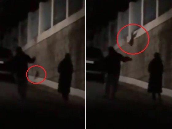 포항서 강아지를 쥐불놀이 하듯 공중에 돌려 학대한 여성 영상